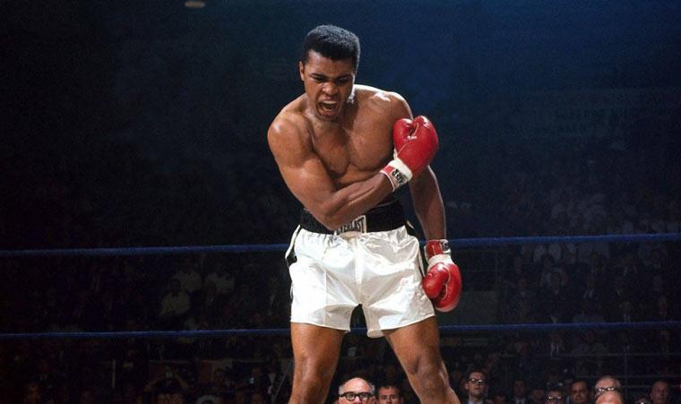 Лучшие боксеры в истории мирового бокса — топ 10