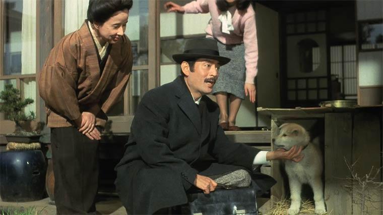 Лучшие японские фильмы: История Хатико