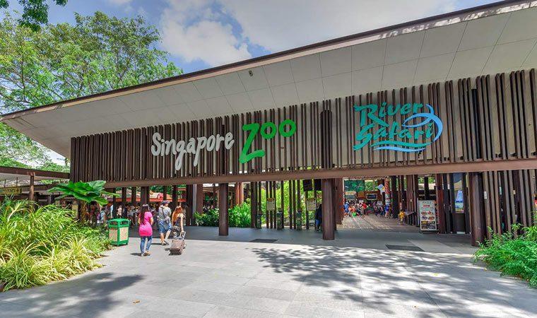 singapurskij-zoopark