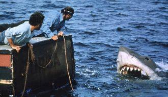 Топ 10 Лучшие фильмы про акул — рейтинг